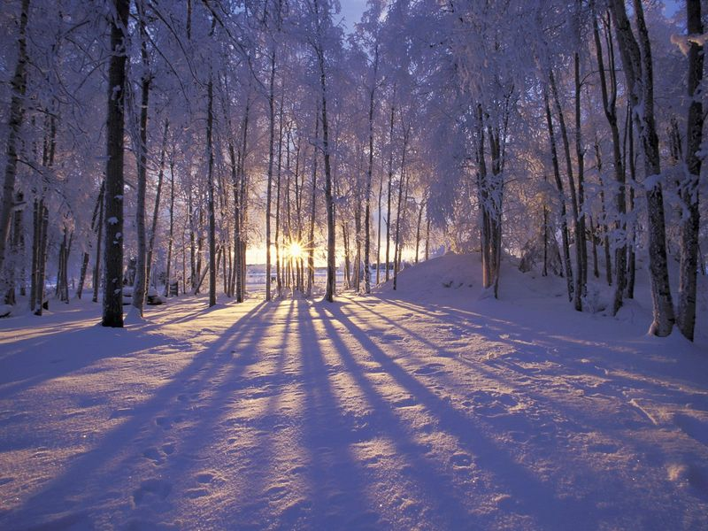 Winter-Solstice-Snow