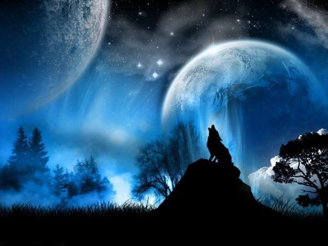 Wolfmanymoonspublicdom