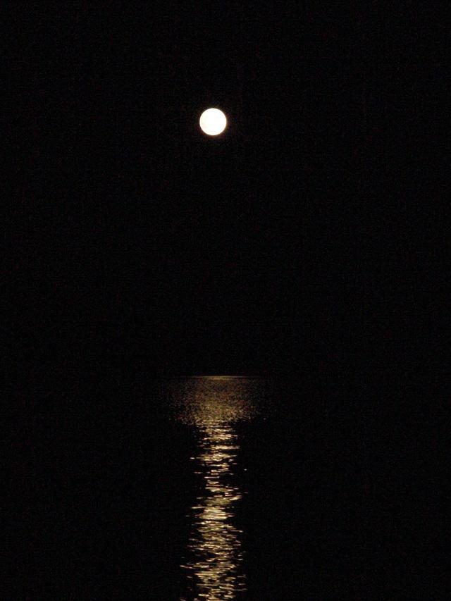 Sturgeon_moon_water_1472x1104_080806